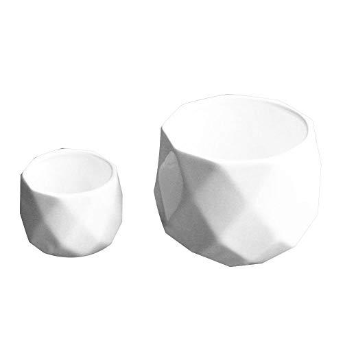 Anyutai Maceta de cerámica grande en maceta suculenta de cerámica blanca, florero esférico multifacético florero de la planta cerámica de la decoración del hogar