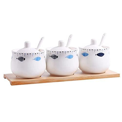 Contenitori per cucine e ripostigli Scatole per condimenti condimenti con coperchi a Cucchiaio Barattoli per spezie in Ceramica Facili da Pulire (Set da Tre Pezzi)