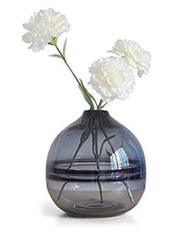 HAUCOZE Glass Vase Table Flower Bud Vase Clear Glass Vase for Home Office Decor 19.5cm H