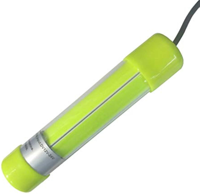 YROD light LED Angeln Lampe, Multi Funktion Laterne Wasserdicht 360° Beleuchtet Licht Tiefes Wasser Locken Fisch Licht 100W 12V (Farbe   Grün light)