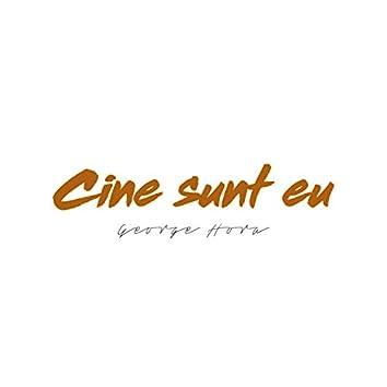 Cine Sunt Eu (Acoustic Version)