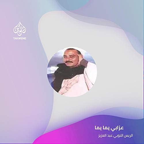 الريس النوبي عبد العزيز