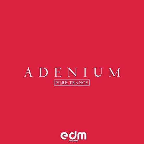 Adenium & Kelle & Juha