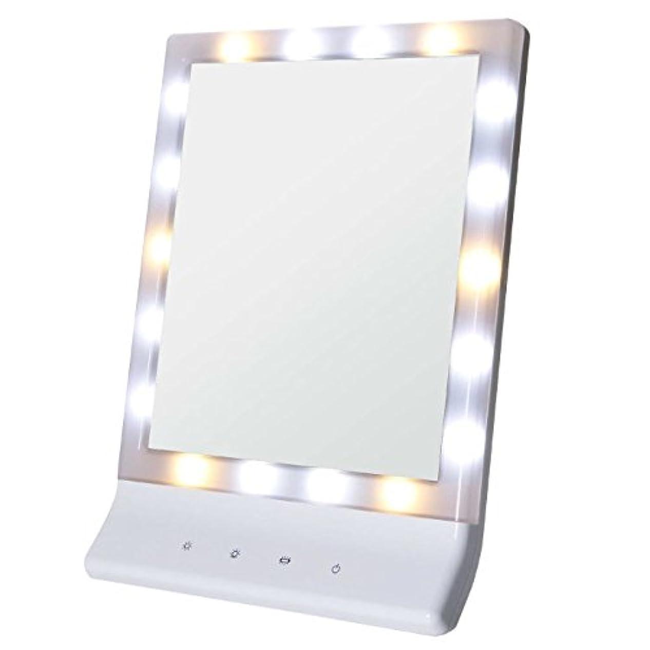 コース悲しみ乳Smaly LED化粧鏡 女優ミラー/お姫様ミラー 電池&USB 2way給電
