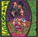 Acid Eaters by Ramones