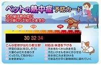 ペットの熱中症予防カード2Pセット【NE-P01】  26度から46度まで計れる簡易携帯型液晶温度計カード ワンちゃんネコちゃんの熱中症対策!