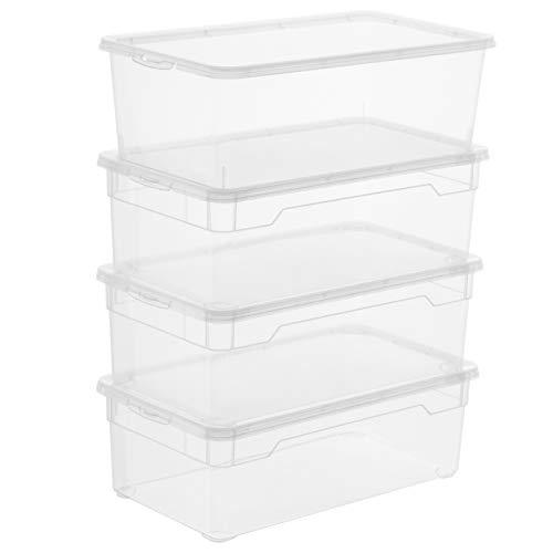 Rotho Clear Set di 4 scatole di conservazione Coperchio, Plastica (PP) Senza BPA, Trasparente, 4 x 5l (33,0 x 19,0 x 11,0 cm), Bianco, unità