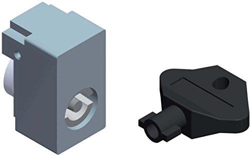 Schneider NSYINUSA1 Spacial SF/SM-Profileinsatz, Einsatz ohne Schlüssel, USA-Schlitz