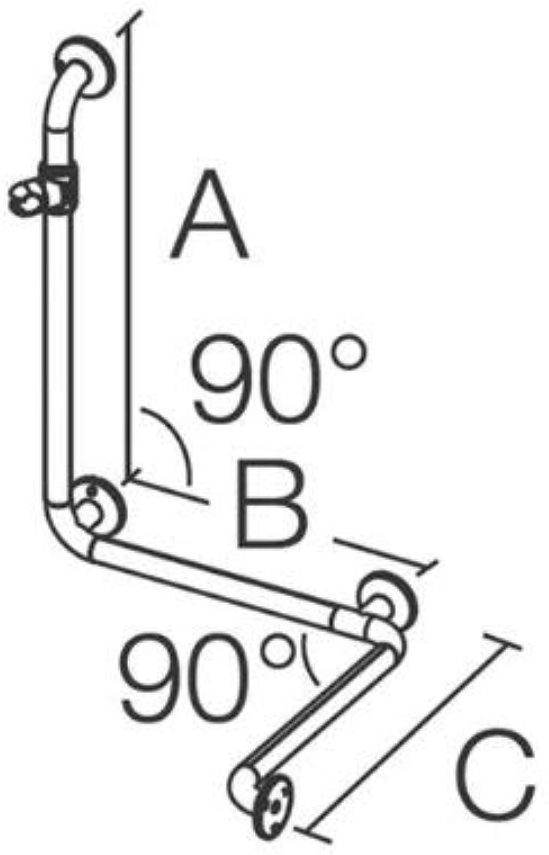 Coram pro Med 200, Duschhandlauf mit Brausehalter wei? 99x56cm x77cm, 0062SG31PM