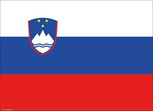 Tischsets | Platzsets - Slowenien Flagge - 10 Stück - hochwertige Tischdekoration 44 x 32 cm für slowenische Feiern, Mottopartys & Fanabende