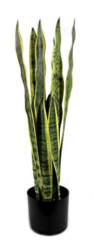 DARO DEKO Kunst-Pflanze Sansevieria Bogenhanf 70cm im schwarzen Topf