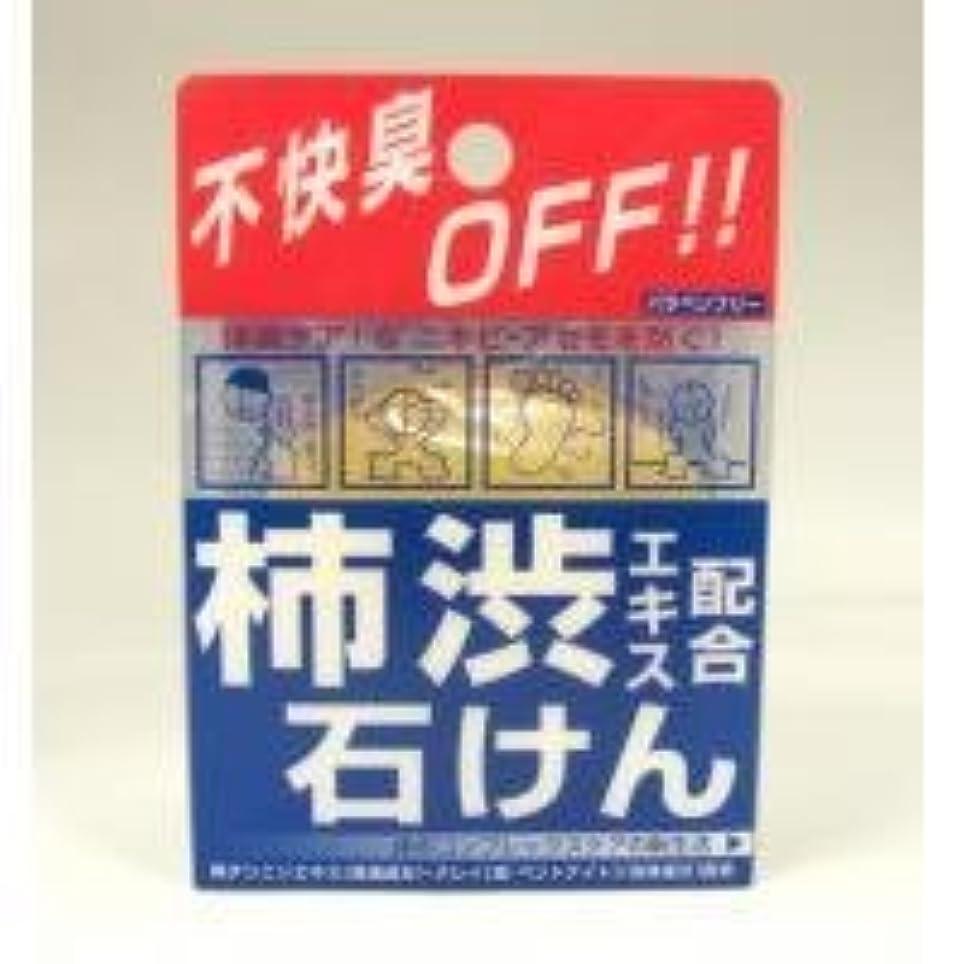 解決するストレッチリアル柿渋エキス配合石けん 100g
