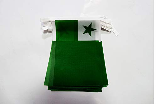 AZ FLAG Esperanto 6 Meters Bunting Flag 20 Flags 9'' x 6'' - International Auxiliary Language String Flags 15 x 21 cm (Lawn & Patio)