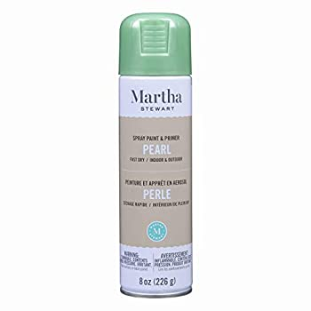 Best pearl spray paint Reviews