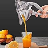 Fruit Juicers - Best Reviews Guide