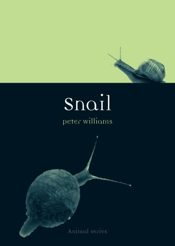 Snail (Anima Series) (English Edition)
