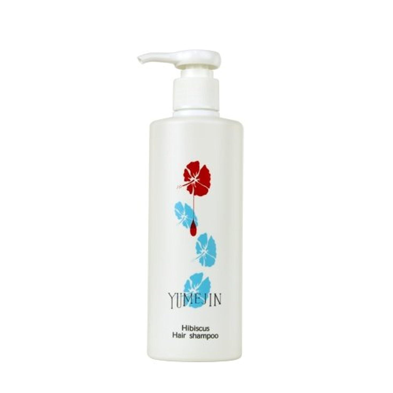 減衰について梨ハイビスカス ヘアシャンプー 【ノンシリコン アミノ酸シャンプー】