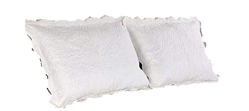 Read About ALL FOR YOU 2-Piece Embroidered Quilted Pillow Shams-Standard Size (Off White)