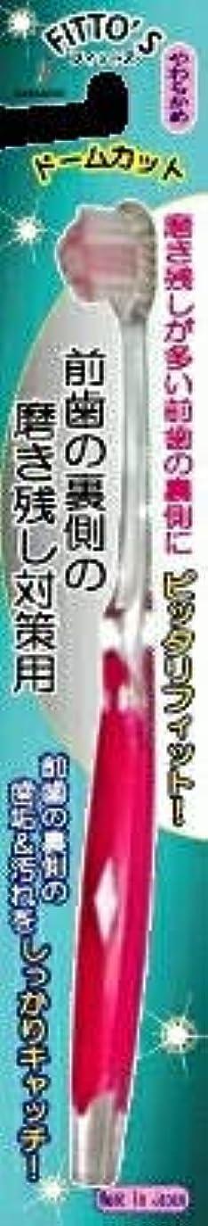誇張起訴する注釈【まとめ買い】前歯の裏側の磨き残し対策用 フィットス やわらかめ ×6個