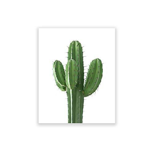 cuadro cactus fabricante Humble Chic NY