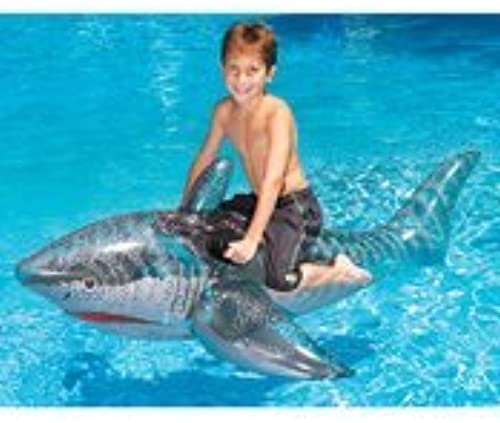INTERNATIONAL LEISURE PRODUCTS 9045 72 INFLATABLE SHARK by International Leisure