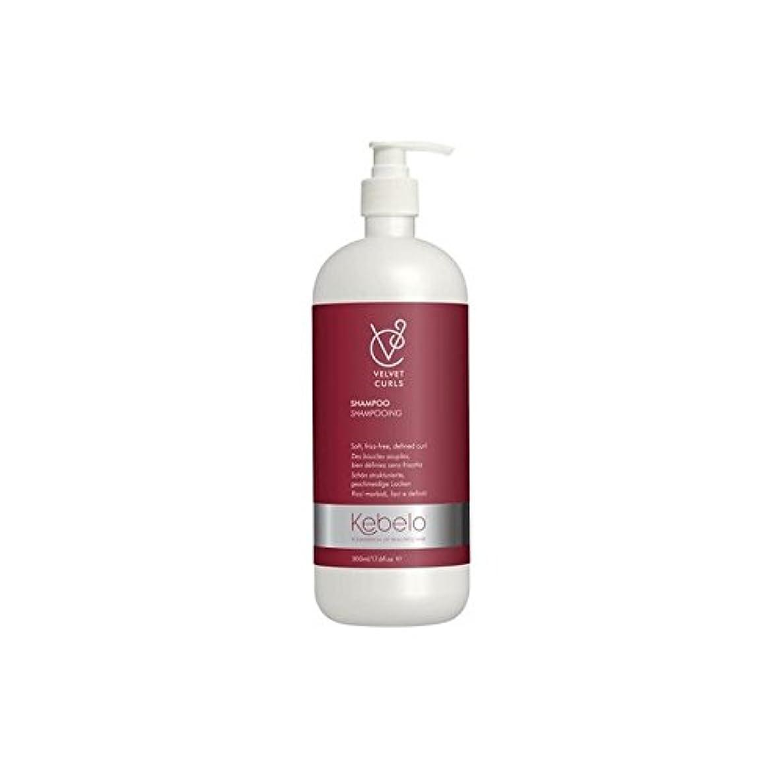 理容室多くの危険がある状況最後にベルベットのカールシャンプー(500ミリリットル) x2 - Kebelo Velvet Curls Shampoo (500ml) (Pack of 2) [並行輸入品]