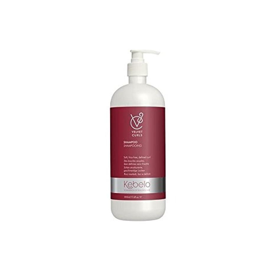 タブレットペースト資源ベルベットのカールシャンプー(500ミリリットル) x4 - Kebelo Velvet Curls Shampoo (500ml) (Pack of 4) [並行輸入品]