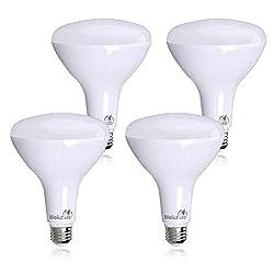 Outdoor LED Flood Light Bulbs [Best Picks, Reviews