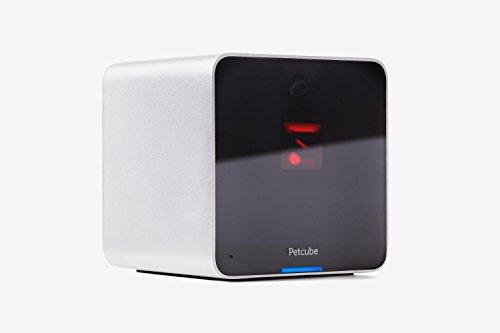 Petcube P161WB5M Webcam