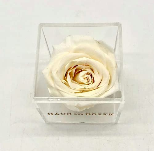 Luxury Sustainable Preserved White Rose in Acrylic Cube – Luxury Gift Silk Flower Arrangements