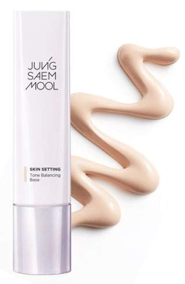 エールデマンドパッケージJUNGSAEMMOOL Skin Setting Tone Balancing Base 40ml [並行輸入品]