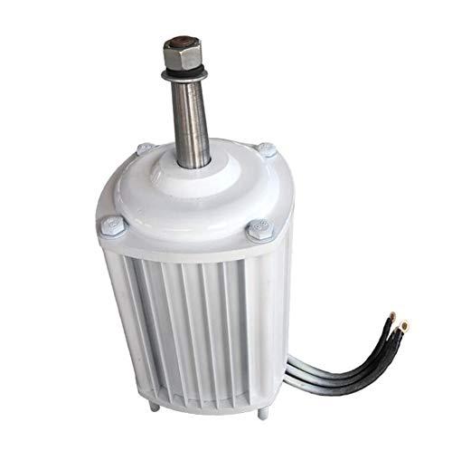 DAXINYANG 10kW Energieteil Zubehör von Windenergieanlagen AC Generator Windgeneratoren wissen effiziente DIY
