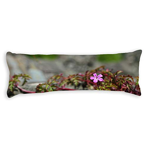 Small Pink Flower Pregnancy Body Pillow Cover with Zipper Best Gifts to Friends Season Home Decorative Throw Pillow Case Cushion Cover Pillowcase for Sofa Bedroom