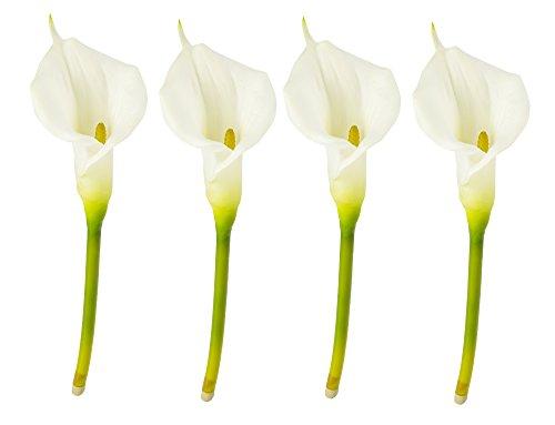 Darice - Accesorios florales y decoraciones, color blanco