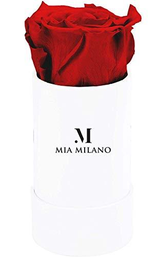 Mia Milano Rosenbox mit Infinity Rosen I Geschenk zum Valentinstag I 3 Jahre haltbar