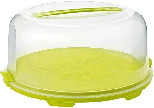 Rotho Fresh hohe Tortenglocke mit Haube und Tragegriff, Kunststoff (PP) BPA-frei, grün/transparent, (35,5 x 34,5 x 16,5 cm)