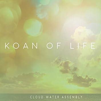 Koan of Life