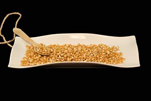 Maiz rosetero para palomitas a granel - 1000