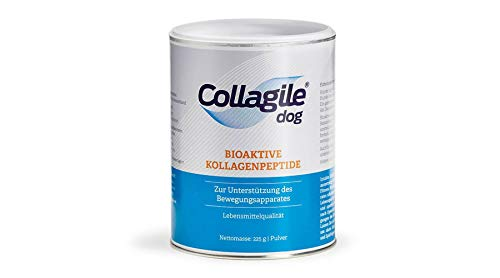 Collagile Dog – Bioaktive Kollagenpeptide – Barf Nahrungsergänzung für Hunde, 3 x 225 g