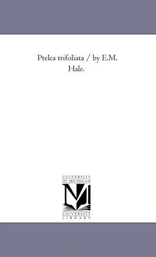 Ptelea trifoliata / by E.M. Hale.