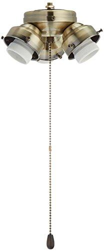 Fanimation F301AB-220 3-Light Turtle Fitter 220-volt, Antique Brass