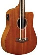 micro bass guitar
