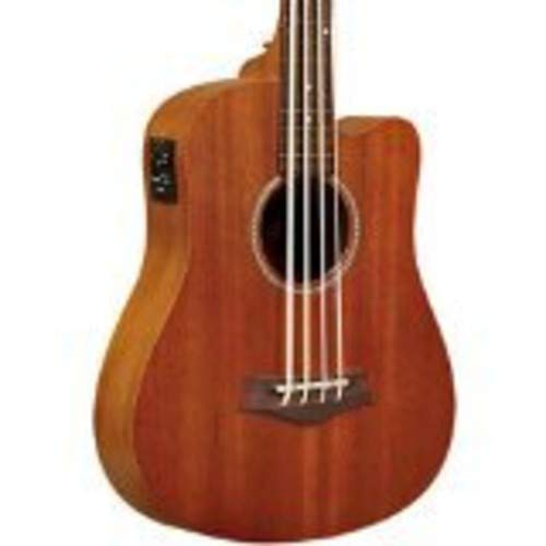 Oro Tono gt-series M-Bass/FL MicroBass acústica (sin