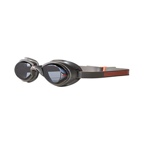 adidas Hydropassion Einteilige Schwimmbrille, Silver Met./Graphite/Smoke Lenses, One Size