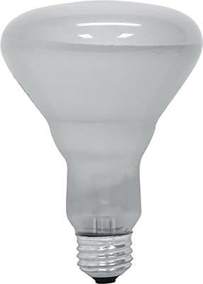 GE Lighting 65-Watt BR30 Floodlight Bulb