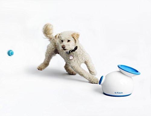 iFetch Interactive Ball Launcher for Dogs – Launches Mini Tennis Balls, Small,Multicolored