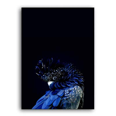 N / A Modern Blue Cockatoo Poster Bird Canvas Painting Interior Wall Art Picture Print Aisle Living Room Home Decoration Frameless 60x90cm