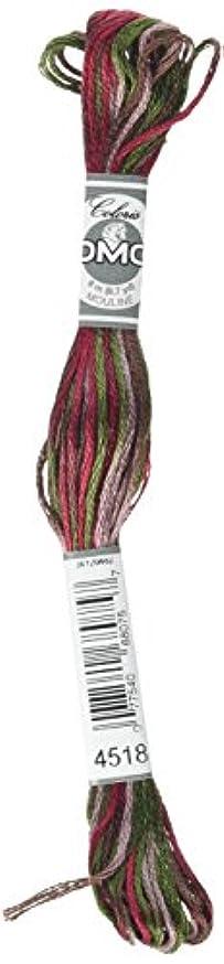 DMC Coloris Embroidery Thread Cottage
