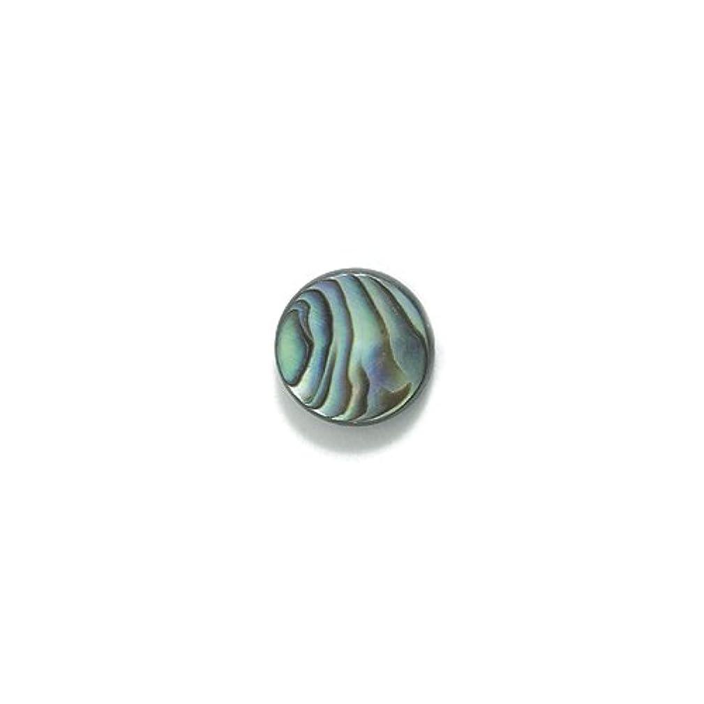 Shipwreck Round Abalone Flat Bead, 10-mm, 20-Pack