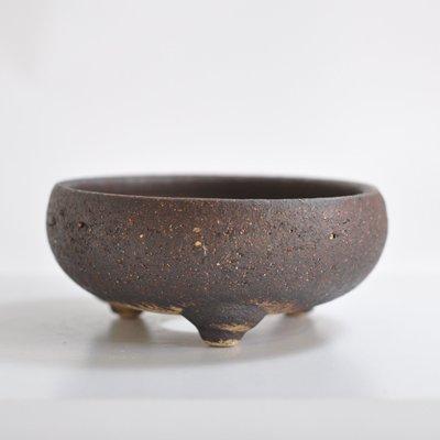 盆栽妙 信楽焼 盆栽鉢 5号 岩石鉄鉢茶 幅14cm×高さ6cm 陶器製 植え替えキット付き 30097A947